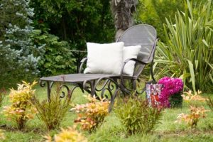Make-your-own-interior-garden-with-plants-of-your-choice