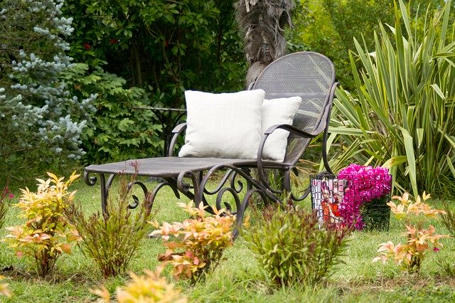 Make your own interior garden with plants of your choice