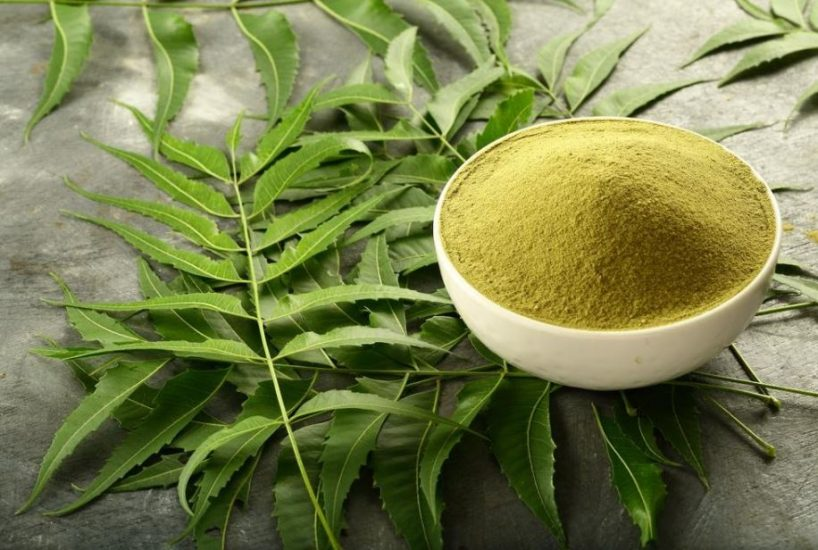 Why Neem Supplements Work So Well?