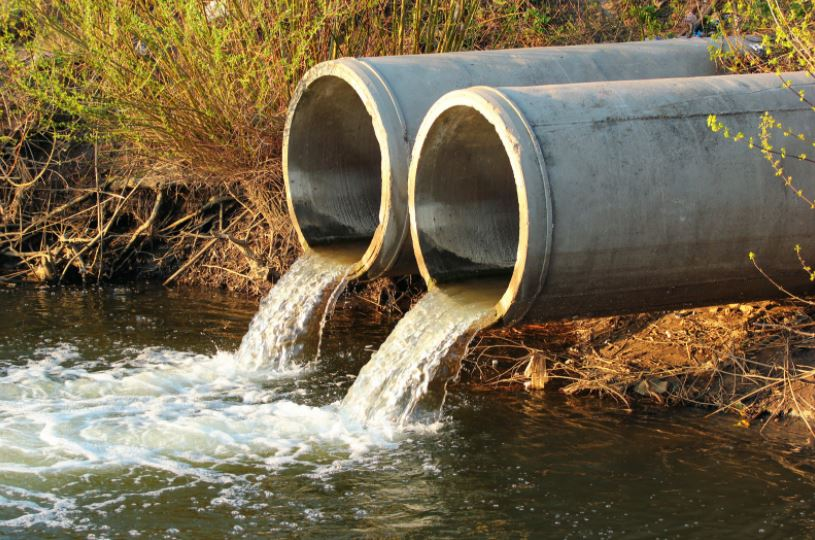 What Can Customers Expect From Sewage Backup Cleanup Services Highlands Ranch Colorado?