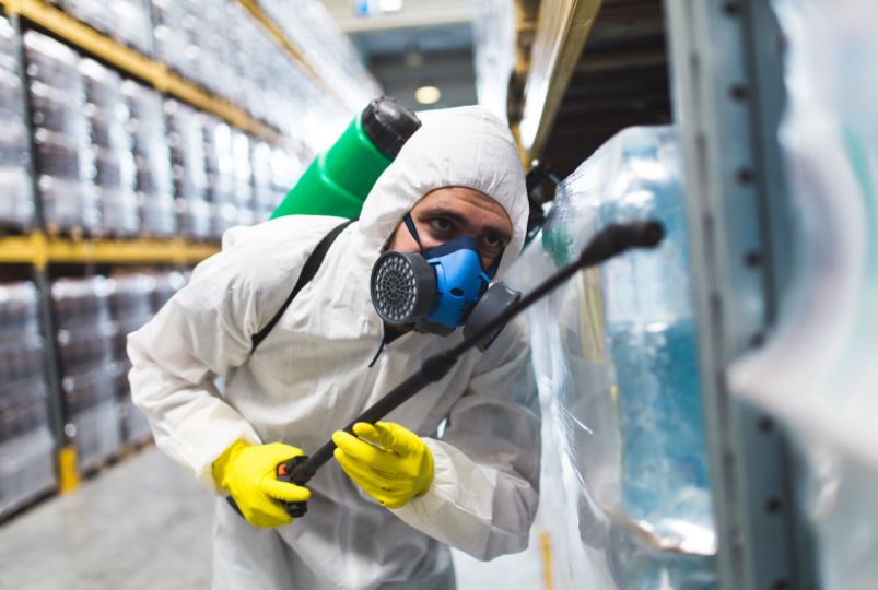 3 Top Advantages of Hiring a Professional Company for Pest Control