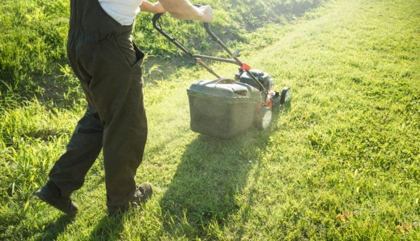 A Helpful Insight Into Everything You Need to Make A Beautiful backyard garden