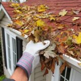 Cleaning your gutters! – When is the best time to do this? and why you should always call the professionals