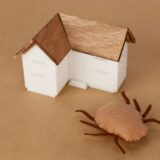 Effective Pest Control at Home: The Dos and Don'ts